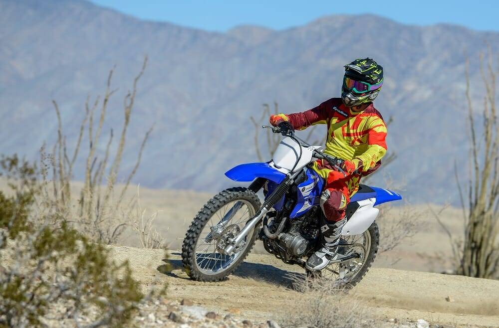 2017 Yamaha TTR230