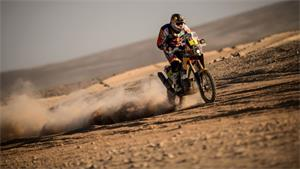 Dakar Rally: Stage To Cyril Despres, Overall To Marc Coma