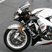 Playboy For MotoGP