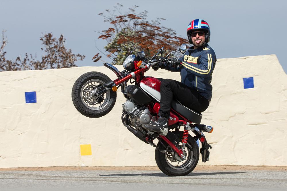 2019 Honda Monkey Bike First Impression Cycle News