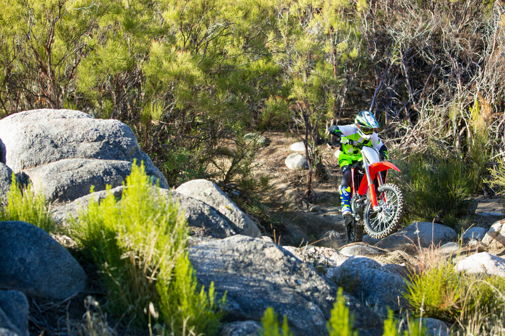 The suspension on the 2019 Honda CRF250RX is the same as the R model but designed to soak up the smaller bumps with more cushion.