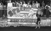 Schwartz-1982