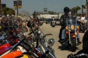 More than 20 American Motorcyclist Association-sanctioned events on tap at 79th Annual Daytona Bike Week