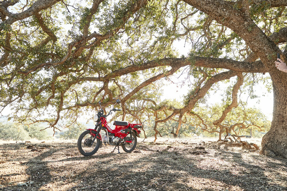 2021 Honda CT125 Trail parked under tree